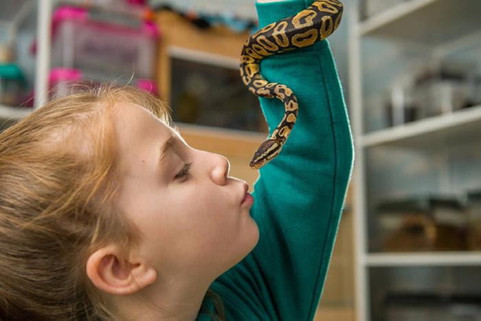 英国8岁女童格林哈尔希Hollie Greenhalgh将卧室打造成迷你动物园