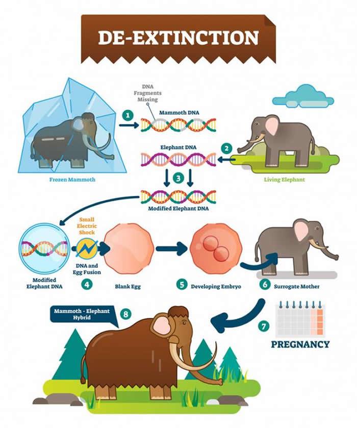 未来我们通过最新科学技术能将灭绝的物种复活吗?