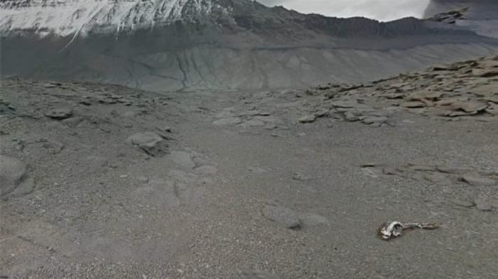 """YouTube频道MrMBB333发布影片称南极海岸发现巨大的""""恐龙""""遗骸"""
