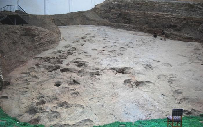 """""""古动物化石之乡""""的生命回响和""""中国恐龙之乡""""的亿年足音"""