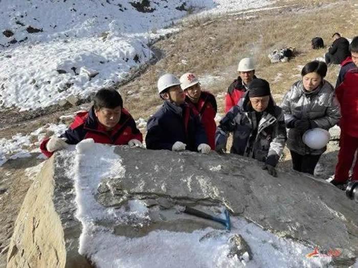 延安发现首例恐龙足迹化石