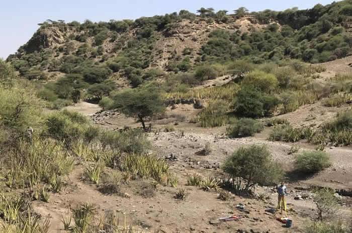 人类在奥杜瓦伊峡谷活动的最早证据可以追溯到大约200万年前