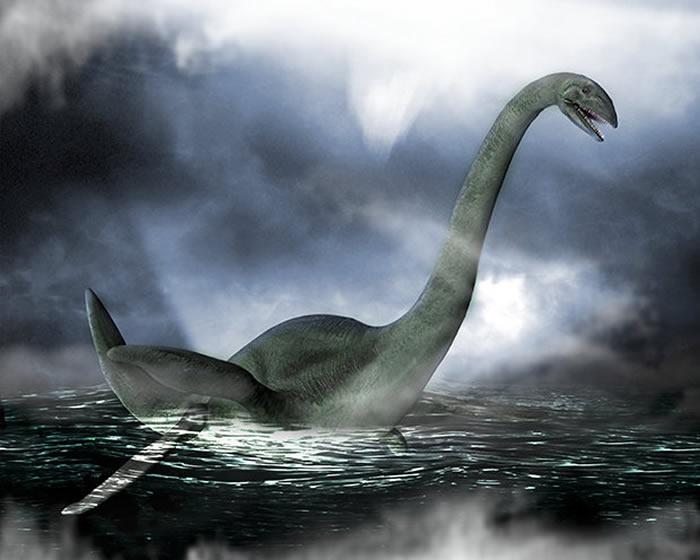 科学家称尼斯湖水怪是一种古老海龟物种 冰河时代被困