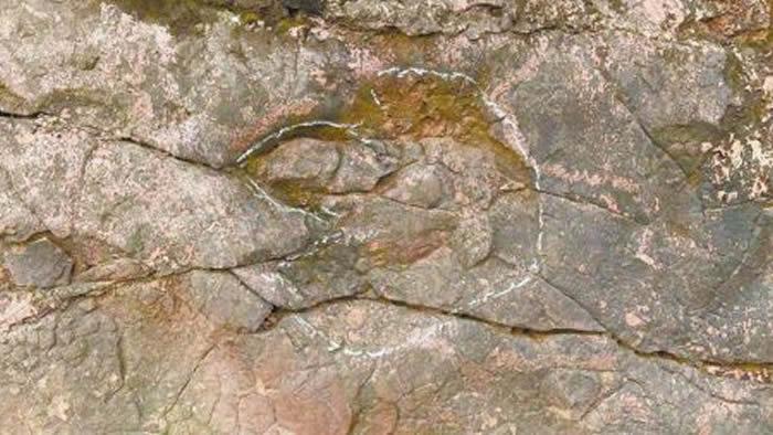四川省乐山市夹江县千佛岩景区发现白垩纪恐龙足迹化石