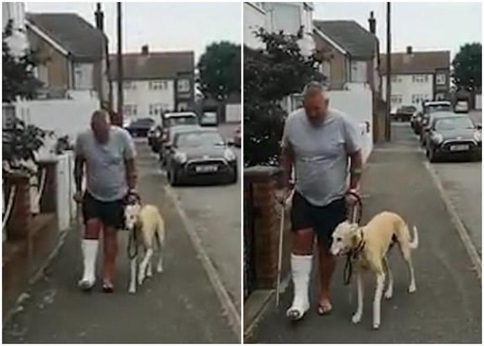 英国伦敦狗狗跛脚行走似受伤 原来是模仿主人