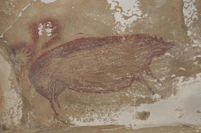 这幅洞穴壁画中大得惊人的猪可能反映出古代艺术家的首要狩猎目标。 MAXIME AUBERT