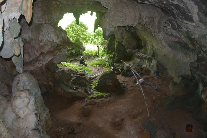 科学家在洞穴的后方墙面离地很高的位置发现这幅艺术品。 AA OKTAVIANA