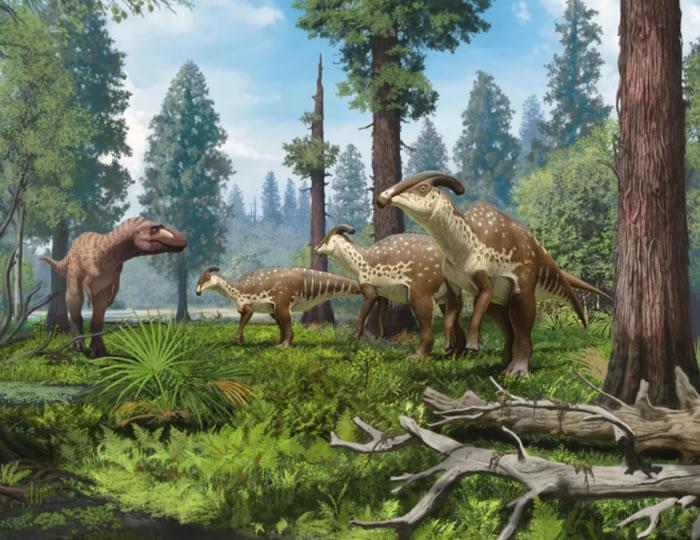 科学家近百年来首次发现副栉龙Parasaurolophu
