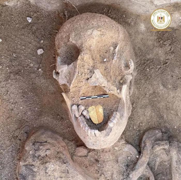 """埃及考古学家在亚历山大城外发现带有""""金舌头""""的人类头骨 有2000多年历史"""
