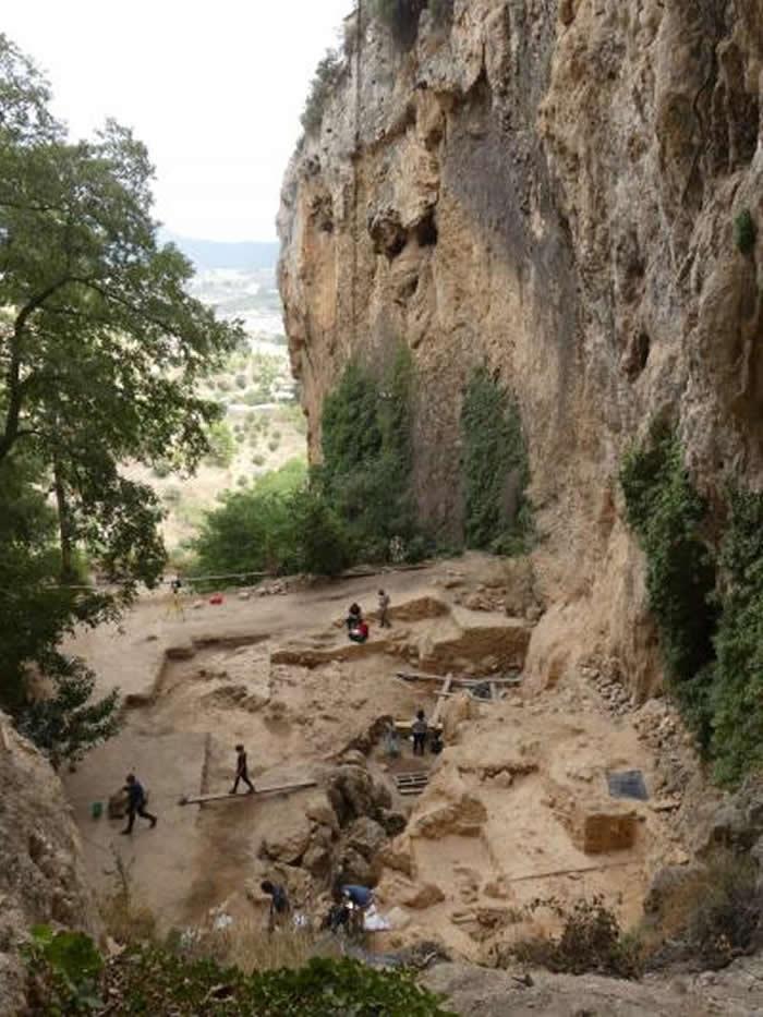 5万年前尼安德特人的粪便内发现肠道微生物痕迹
