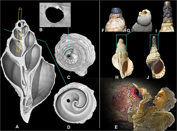 法国比利牛斯山脉旧石器时代洞穴发现的已知最早海螺壳号角在1万7000年后再次响起