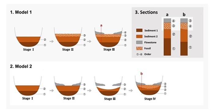 """中国南方洞穴遗址地层(化石)堆积模式,1. Model 1-以前研究应用的""""理想型""""堆积模式;2. Model 2-本研究证明的""""假覆盖""""堆积模式;3. 不同堆"""