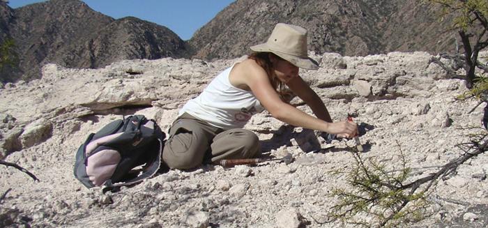 阿根廷西部拉里奥哈省发现生活在距今2.3亿年前的新爬行动物:喙头龙新种类