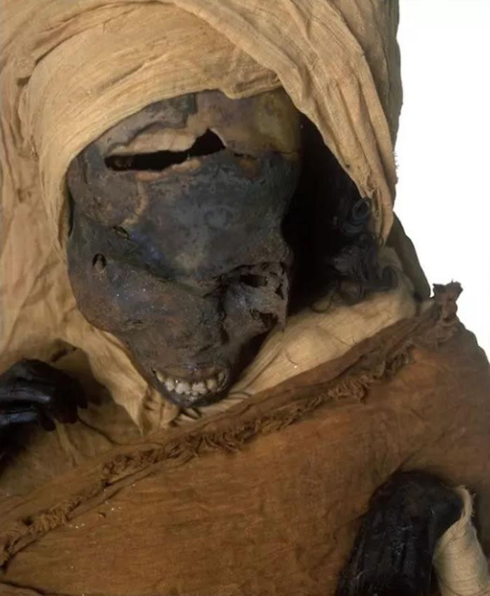 距今约3600年的古埃及第十七王朝法老塞格嫩拉是在与希克索斯人的战斗中被杀害