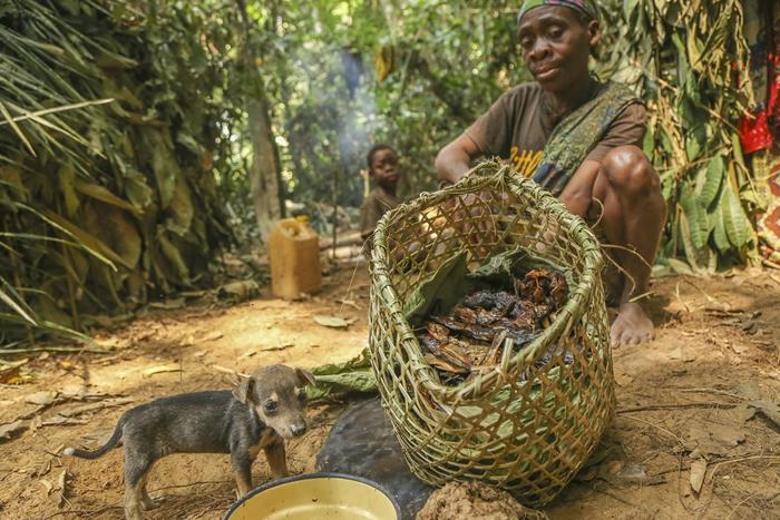 淡水渔业是亚洲、非洲和南美2亿人口主要的蛋白质来源,并为6000万人提供了生计和就业机会。照片来源:Daniël Nelson/WWF