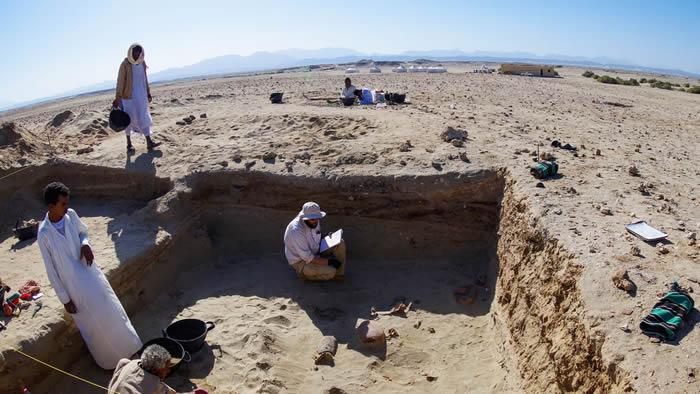 红海沿岸古埃及近600只猫狗的坟墓可能是世界上最古老的宠物墓地