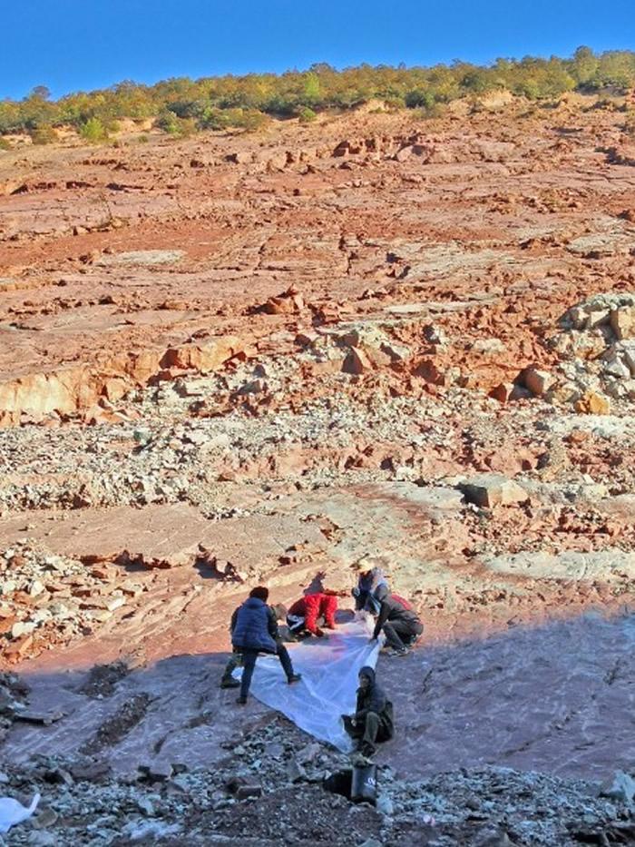 四川省凉山州昭觉县的三比罗嘎二号足迹点为我国面积最大的恐龙足迹点