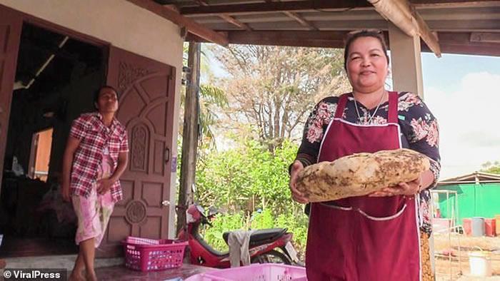 泰国洛坤府女子台风后在海滩散步捡到鱼腥味怪石头 原来是价值不斐的龙涎香