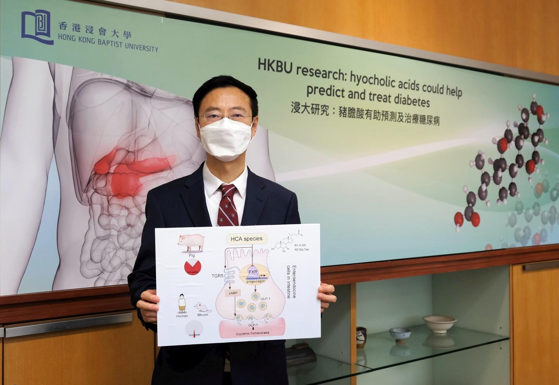香港浸会大学领导的研究显示猪胆酸能预测及治疗糖尿病