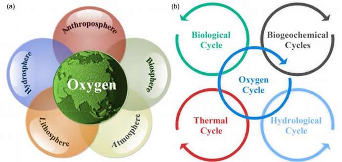 氧循环在地球系统科学中的地位(a)及其和其他生物地球化学循环的联系(b)