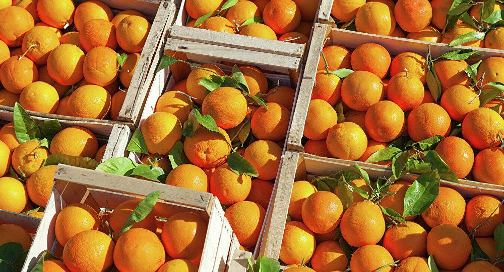 美国印第安纳大学研究指过量食用橙子会引发皮肤癌