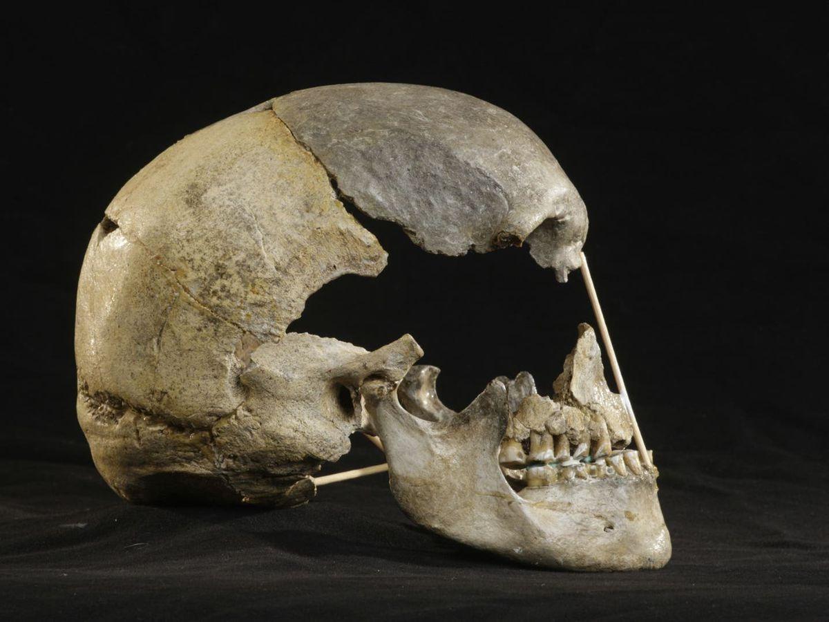 《自然生态与进化》杂志:非洲以外最早现代人基因组测序 取自捷克约45000年前头骨