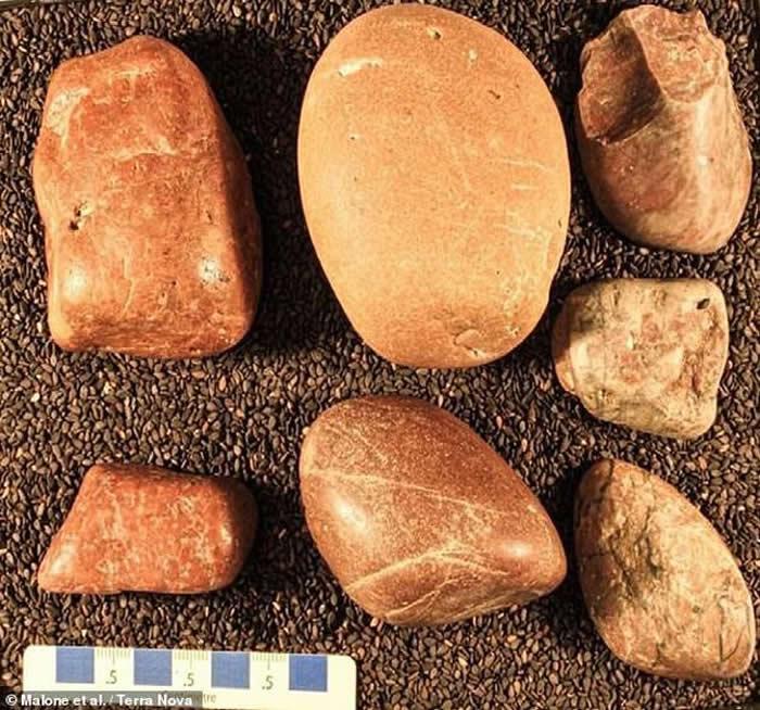 """美国发现的""""胃石""""提示1.5亿年前蜥脚类恐龙"""