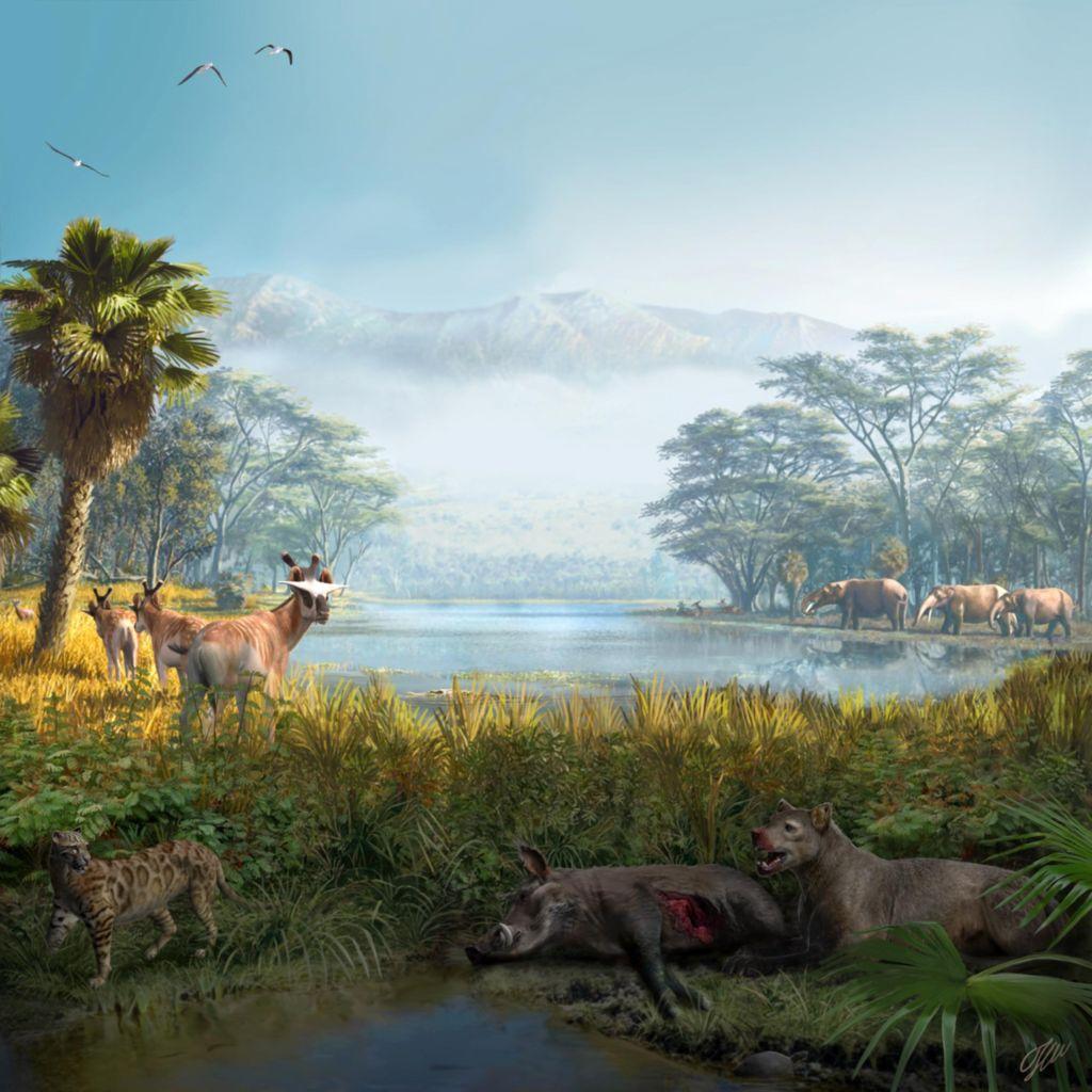 追溯2100万年 探索人类如何更好地保护生态系