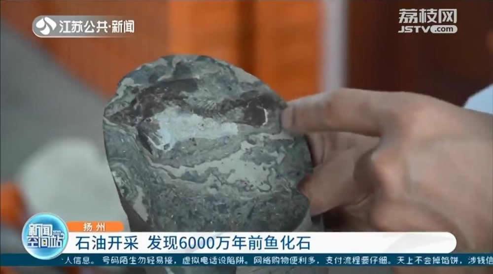 江苏油田研究人员在岩心样本中发现6000万年前