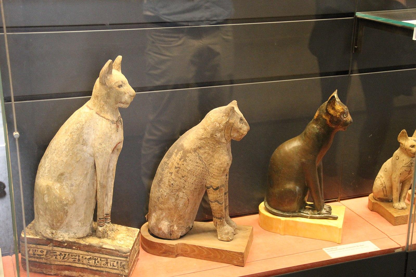 为什么古埃及人对猫如此着迷?