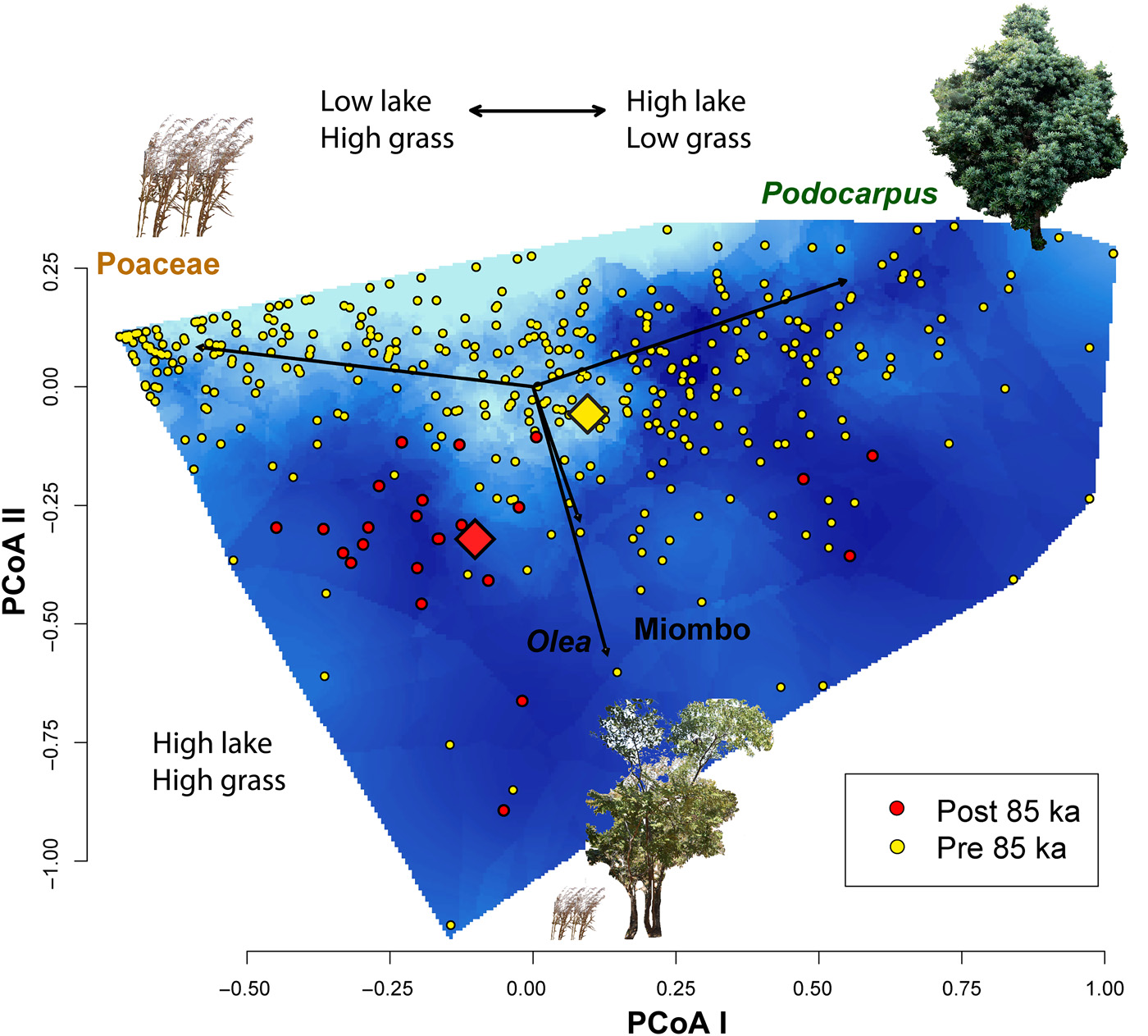 非洲东部马拉维湖北岸的考古证据表明古人类用火改变整个生态系统