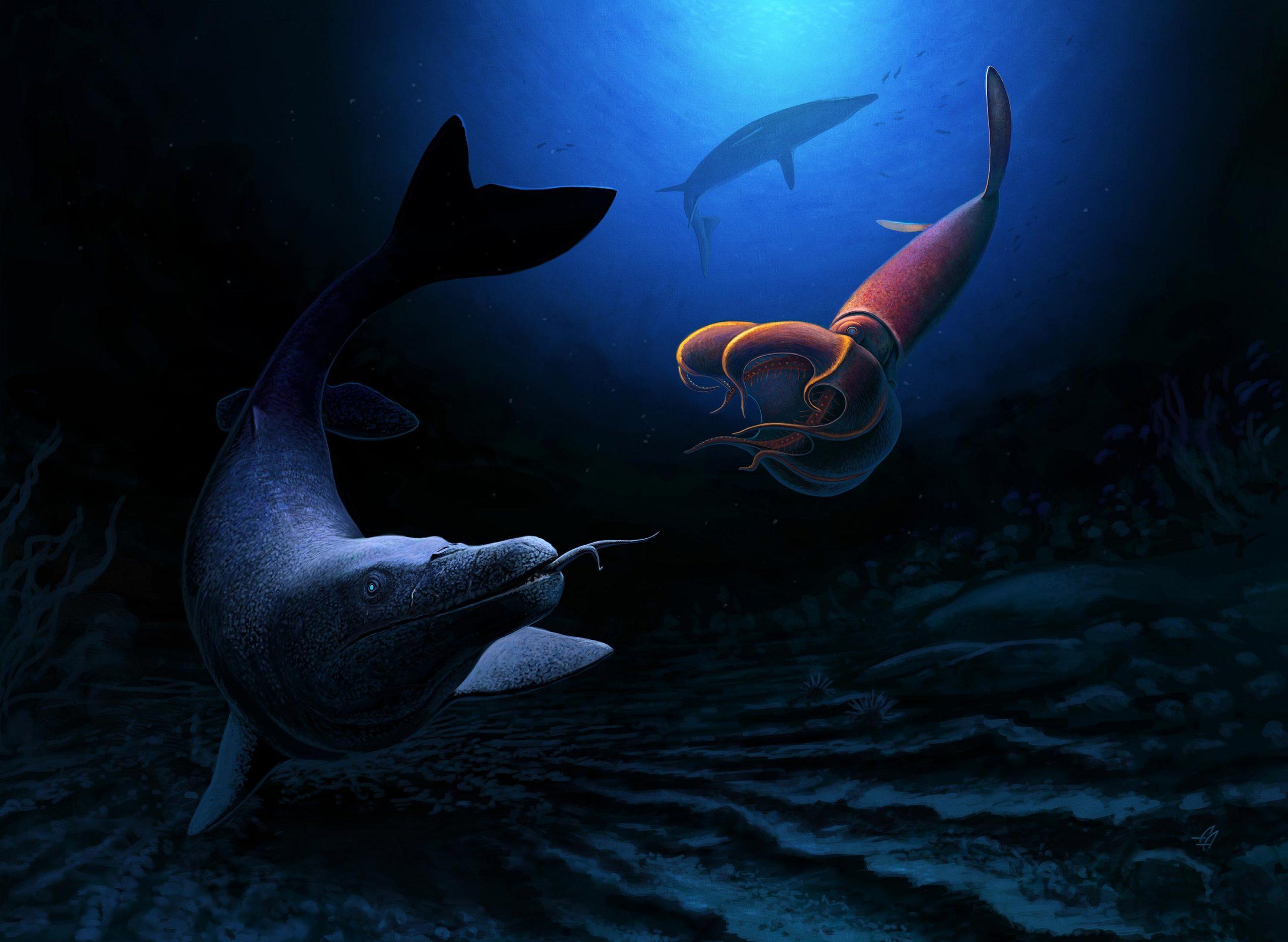 摩洛哥发现的白垩纪末期海蜥蜴可能长达8米