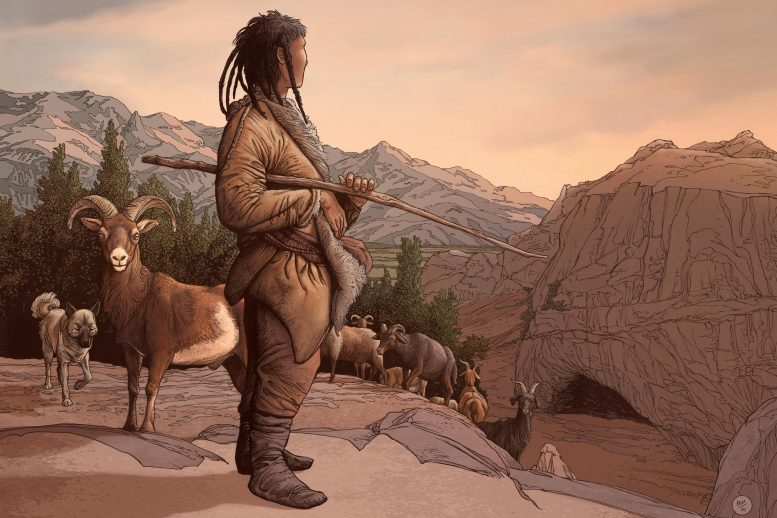 《自然:人类行为》杂志:新研究显示中亚地区动物驯化根源至少可以追溯到8000年前