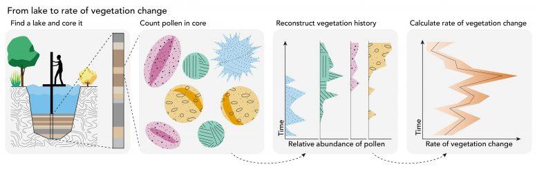 花粉化石的研究显示现在地球植被的变化比过去18000年的变化更快