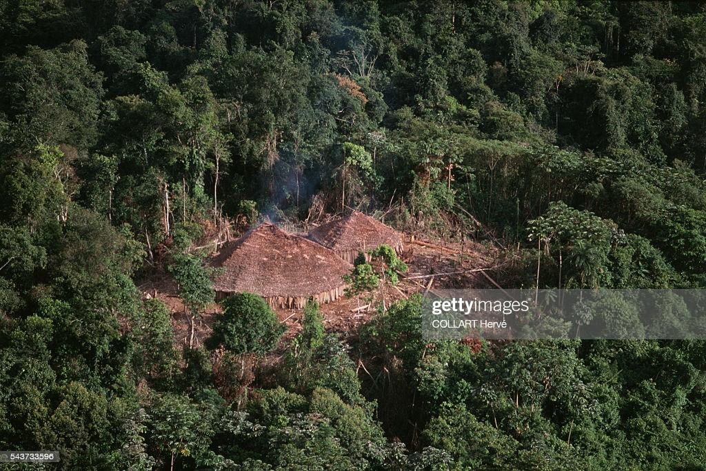 1.3万年来一直有人类在热带森林中定居 人类-食物间的古老反馈可增进粮食安全