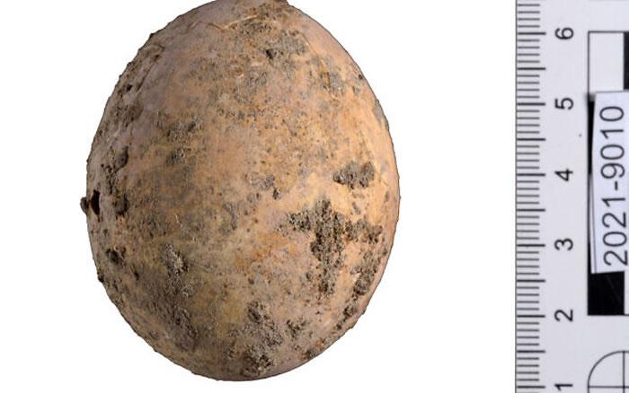 以色列考古学家发现一枚拥有千年历史的鸡蛋