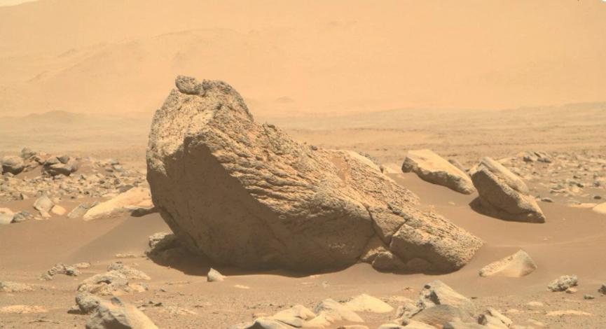 """NASA""""毅力号""""火星车拍摄到形状像海象的巨石"""