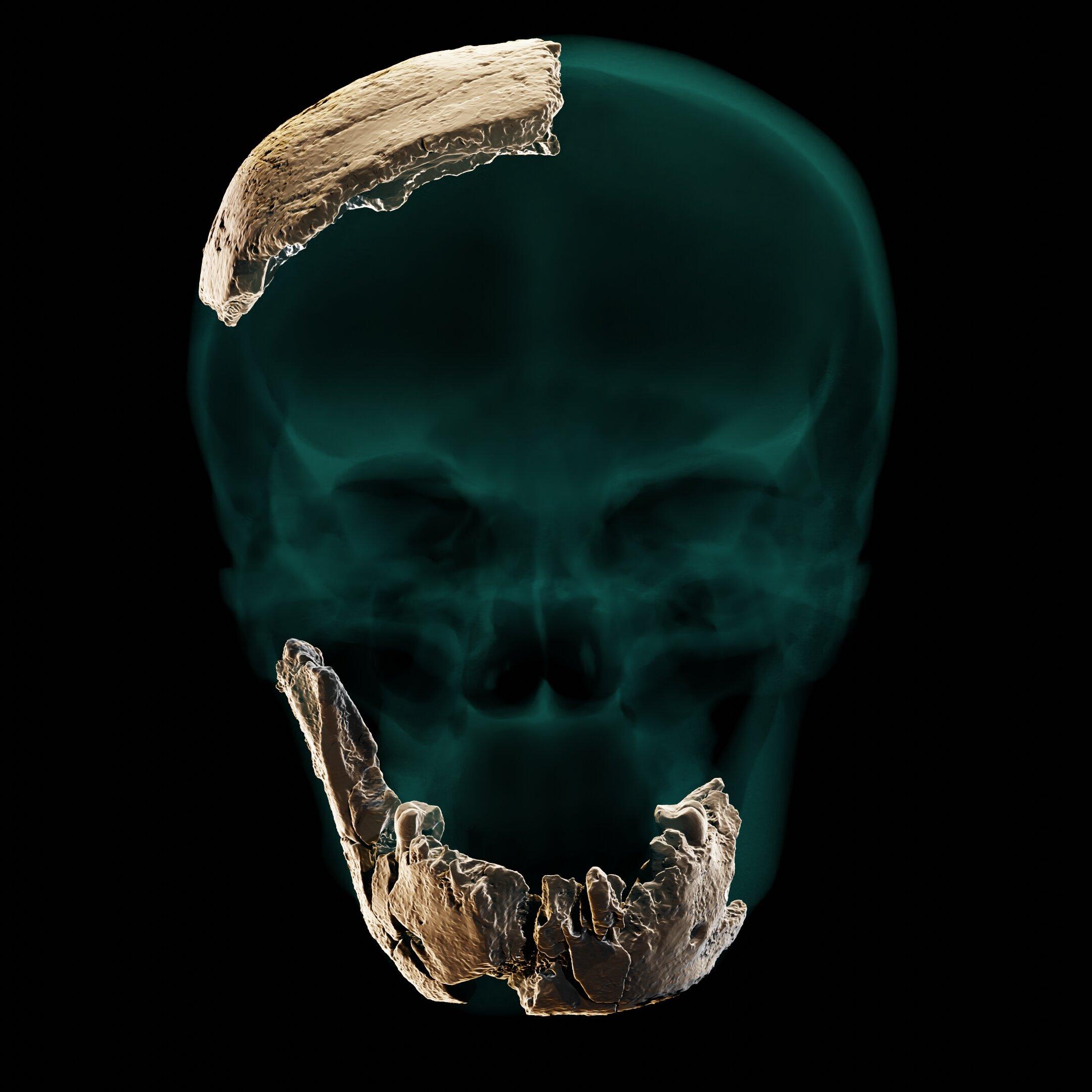 这些遗骸被发现时,身边还带有工具。虽然工具与现代人类有关,但遗骸具有一些与更古老的古人类相似的特征。供图:ARIEL POKHOJAEV, SACKLER FA