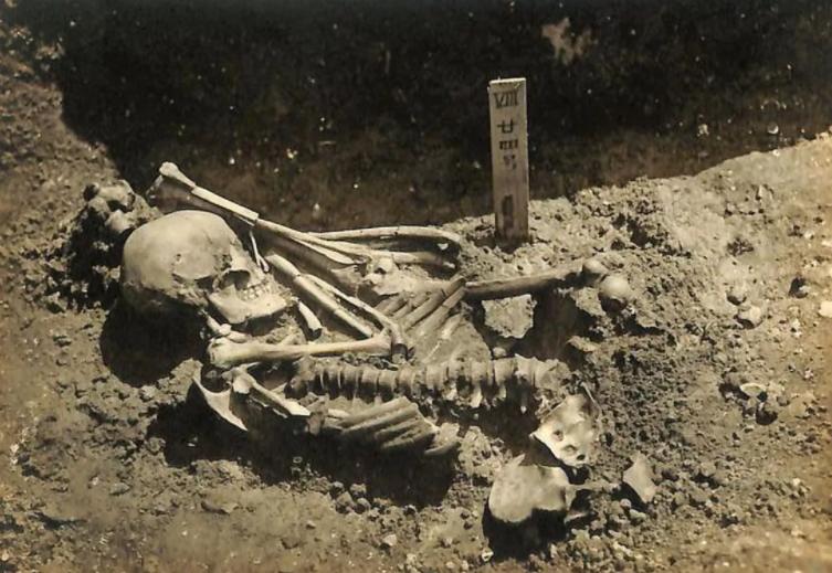 日本冈山县笠冈市发现史上最古老鲨鱼袭击的人类受害者 处于3000多年前绳文时代