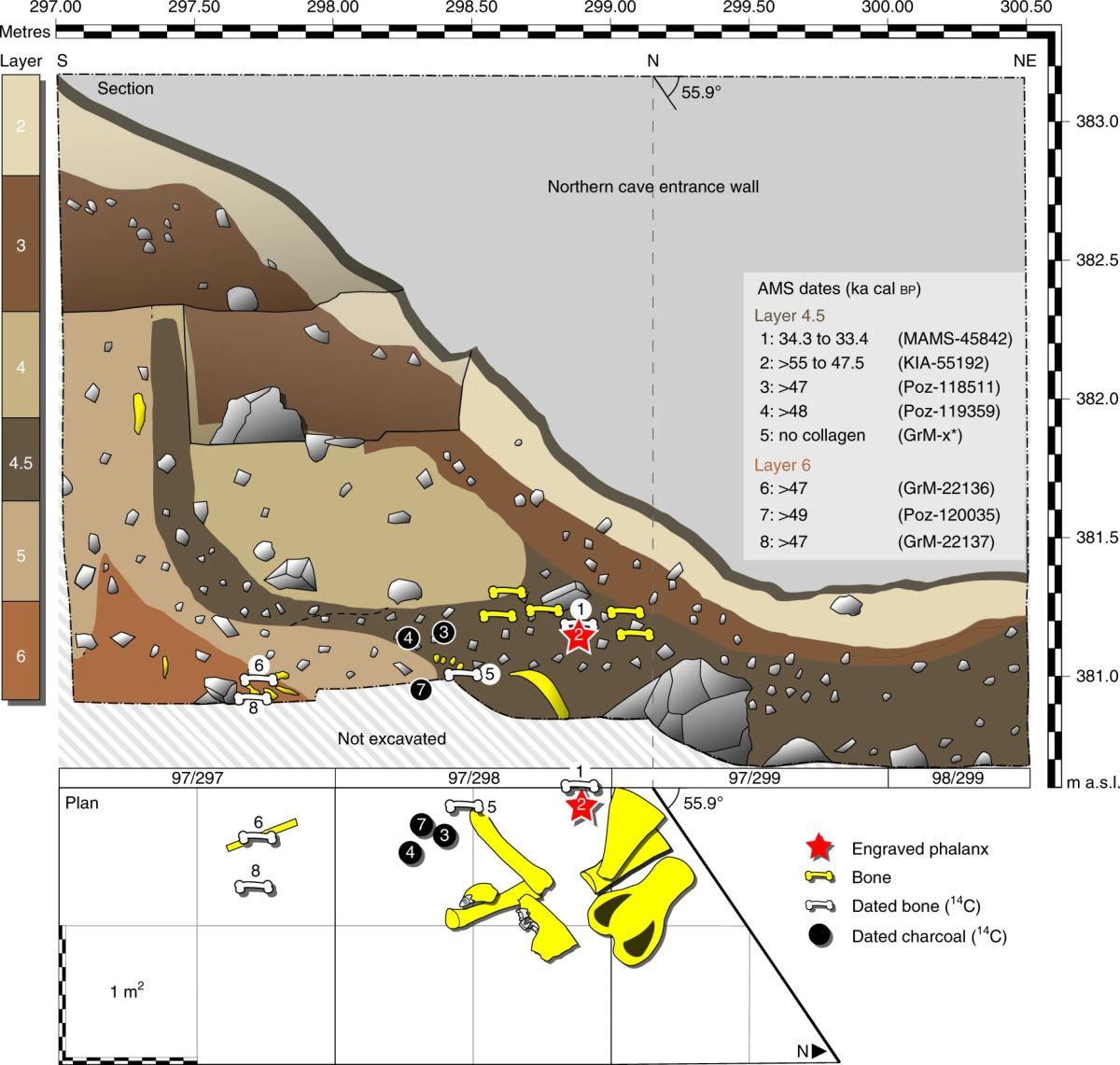 德国北部哈兹山脉发现5.1万年前尼安德特人的骨雕作品