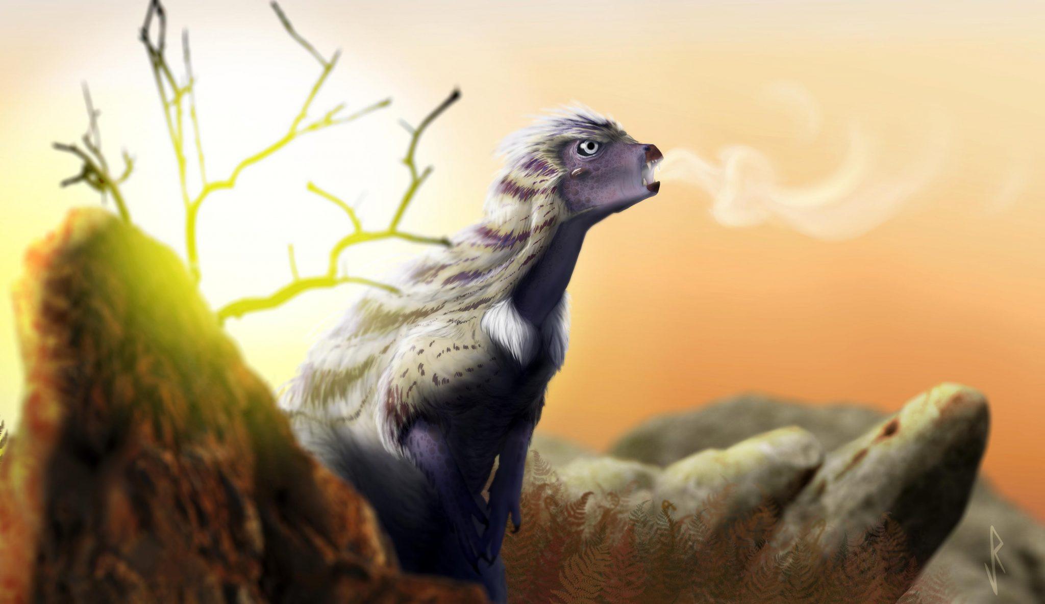 高能X射线展示2亿年前的恐龙Heterodontosaurus tucki如何呼吸