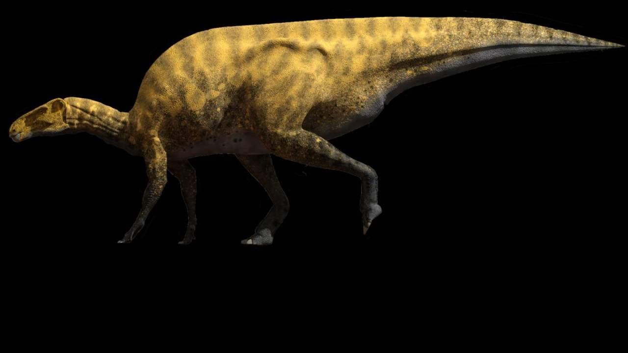 西班牙发现一种新的类似禽龙的恐龙物种Portellsaurus sosbaynati