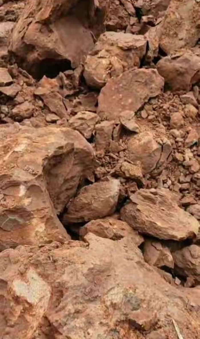 时隔20年广东茂名再次发现恐龙蛋化石