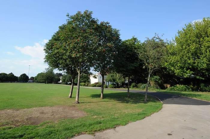 英国伦敦西部一名妇人在郊区公园散步时遭近百只老鼠疯狂啃咬