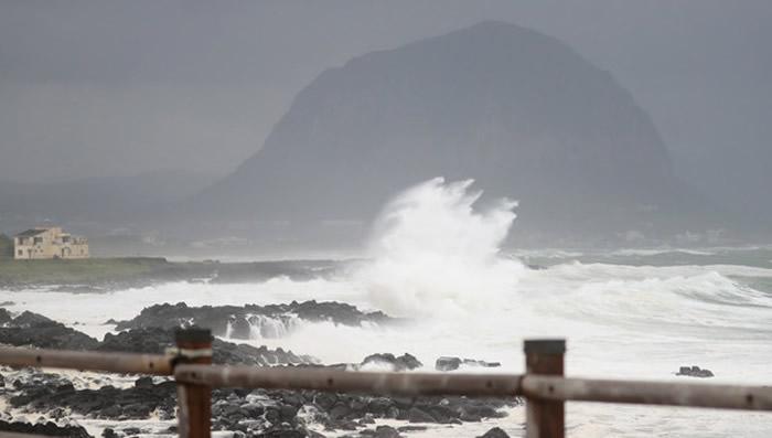 """日本""""奄美大岛、德之岛、冲绳岛北部与西表岛""""登记为世界自然遗产"""