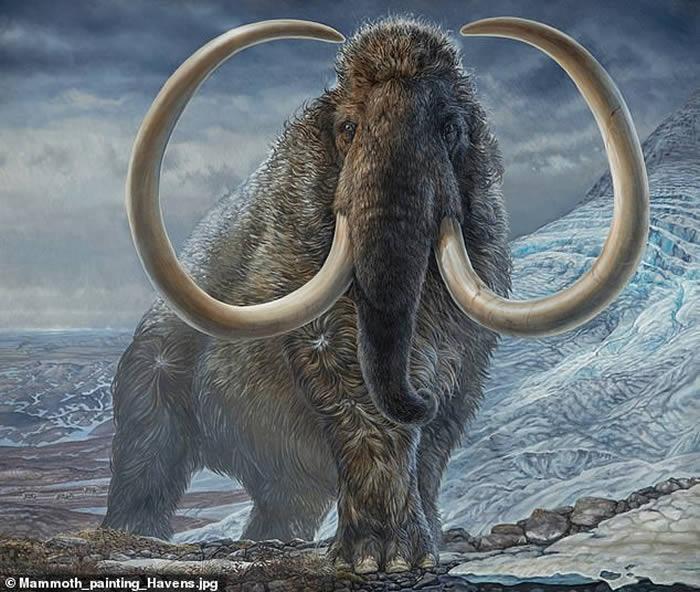 利用象牙内的同位素重建生活在1.7万年前北极