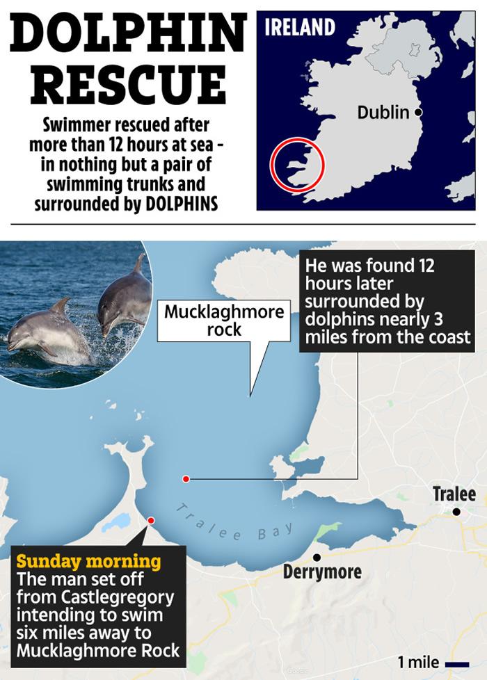 英国男子想要横跨海峡游到一半体力不支 一群海豚帮助才让他没有失温死亡