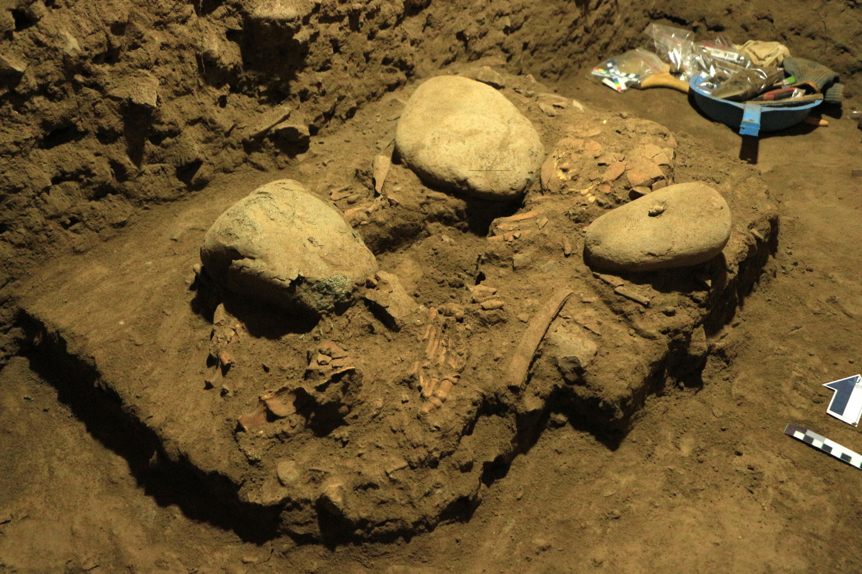 """印度尼西亚苏拉威西岛发现7200年前遗骸 新型古人类""""图阿莱人""""有丹尼索瓦人基因"""