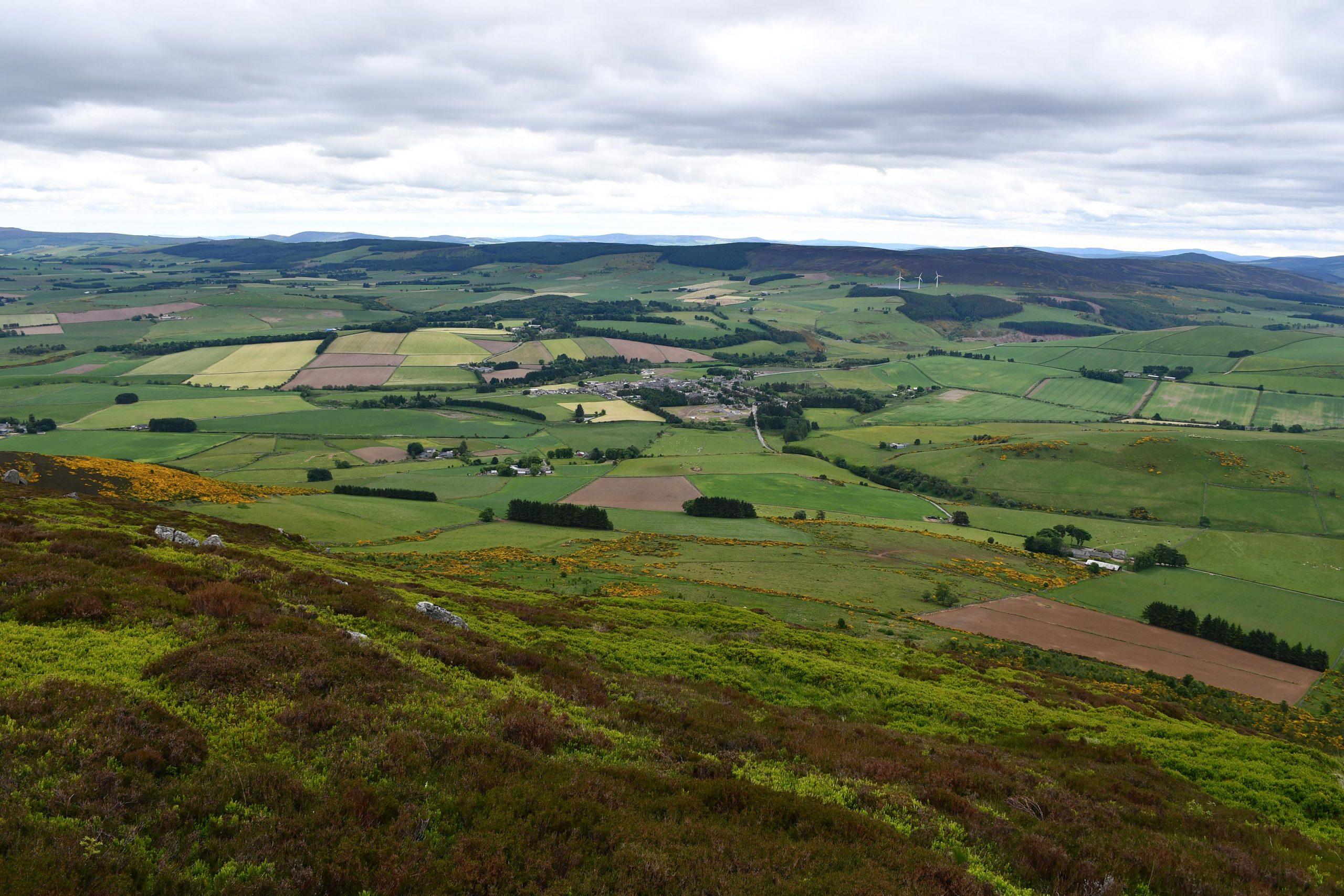 苏格兰阿伯丁郡的雷尼村的景色。被称为Rhynie chert的化石矿床是以一个多世纪前首次发现的Rhynie村命名的。