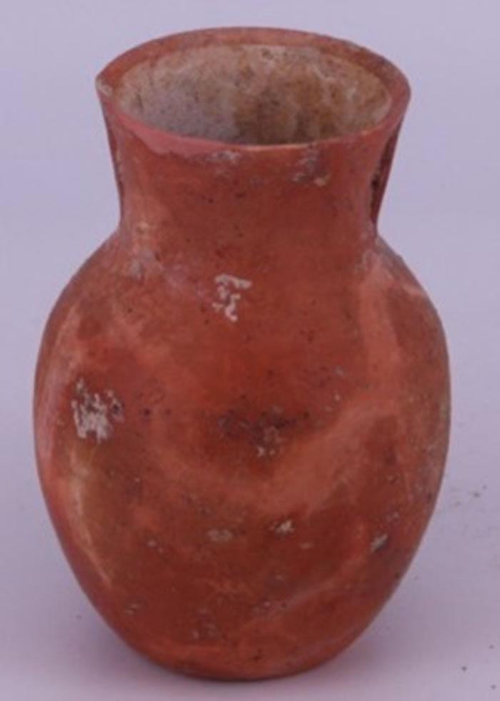 中国南部桥头遗址发现9000年前啤酒残留物
